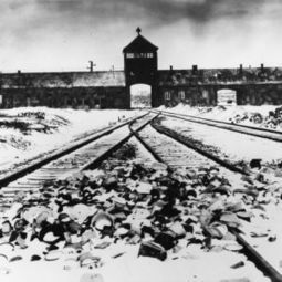 Stop believing the Allies could have bombed Auschwitz to save lives - Opinion | British Genealogy | Scoop.it