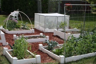 My Square Foot Garden: Storing and Organizing your Seeds | Annie Haven | Haven Brand | Scoop.it