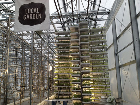 Grow City: Sci-fi Urban Farming: virtual land, adaptive re-use and high-tech growing | Vertical Farm - Food Factory | Scoop.it