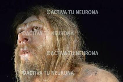 El último día del Neandertal   La Evolución Humana   Scoop.it
