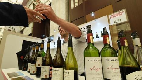 Au Japon, les vins chiliens détrônent pour la première fois les crus français | Winemak-in | Scoop.it