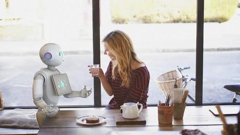 En 2020, 1 foyer américain sur 10 aura son robot | Une nouvelle civilisation de Robots | Scoop.it