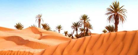 Morocco Tours, Morocco adventure tours,Luxury private Tours of Morocco , Tours to morocco,Marrakech day trips, Jewish Cultural journeys,Morocco camel Treks and sahara desert trips - Moroccan Advent...   Morocco Tours    Jewish Cultural Tours   Morocco Adventures Tour   Cheap Morocco Holidays   Marrakech & Desert Trips   Scoop.it