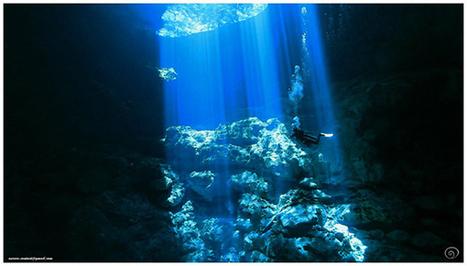 PSMCAFE, toute l'info sur la Chasse sous marine, l'Apnée, Snorkeling & Photo subaquatique - News | Apnea & Spearfishing | Scoop.it