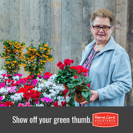 Spring Gardening Tips for Aging Adults | Home Care Assistance of Oklahoma | Scoop.it
