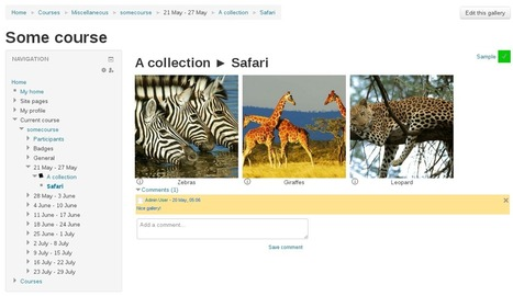 Moodle plugins directory: Media collection | Moodle and Web 2.0 | Scoop.it