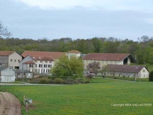 La polyculture bio est rentable, selon l'Inra - France | Les colocs du jardin | Scoop.it