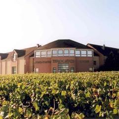 Séjour dans le vignoble de Chablis en maison d'hôtes de charme | Boutique oenotourisme sur Mon Vigneron | Discover France | Scoop.it