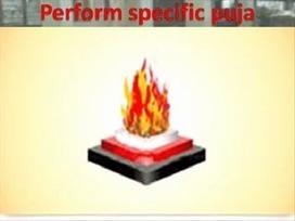 Perform specific puja.wmv | Live Yagya | Scoop.it