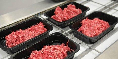 Plats préparés : vers l'étiquetage de l'origine de la viande ? | De la Fourche à la Fourchette (Agriculture Agroalimentaire) | Scoop.it