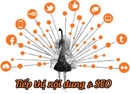 Tiếp thị nội dung hay SEO: cái nào quan trọng hơn | Diễn đàn SEOMxh | Scoop.it