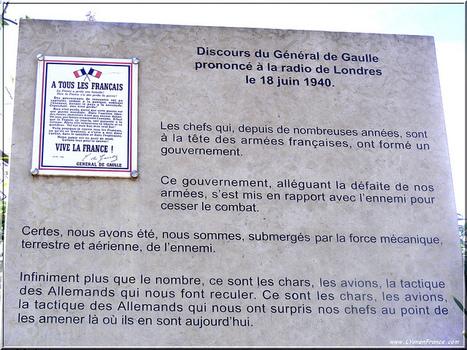 Appel du 18 juin : le discours | Photos de LYonenFrance | LYFtv - Lyon | Scoop.it
