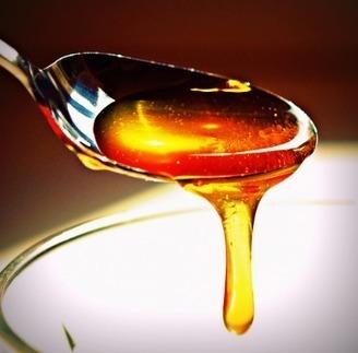 Entre miel et vinaigre - L'Obs (Blog) | apiculture 2.0 | Scoop.it