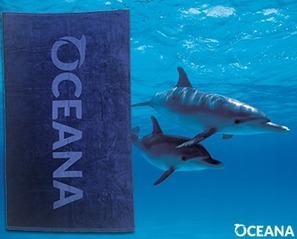 Become a Member to Stop Seismic Airgun Blasting | Oceana | All about water, the oceans, environmental issues | Scoop.it