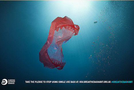 Plastic bag levy is a small price to pay for clean and healthy sea - Western Morning News | It's in the bag | Scoop.it
