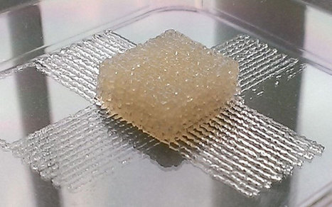 Silk Bioink for 3D Printing of Biological Tissue Implants at Room Temperature | Digitized Health | Scoop.it