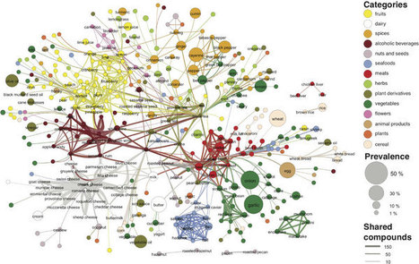 Flavour network and the principles of food pairing : Data Science in Gastronomy | Gastronomic Expeditions | Scoop.it