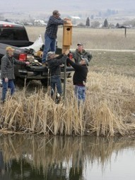 Installing deluxe Wood Duck accommodations at Teller, Montana | GarryRogers NatCon News | Scoop.it