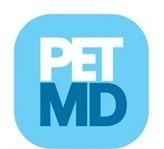Managing Pain In Dogs | petMD | Pets In Pain: Need Stem Cell Nutrition! | Scoop.it