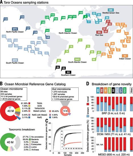 Structure and function of the global ocean microbiome | Plant microbiome studies | Scoop.it