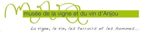 Musée de la vigne et du vin d'Anjou | Culture Vin | Scoop.it