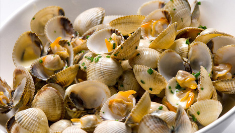 Ways To Choose The Best Seafood Restaurant Offering Crustacés Huitres (Oysters Shellfish) In Your Area | Restaurants | Scoop.it