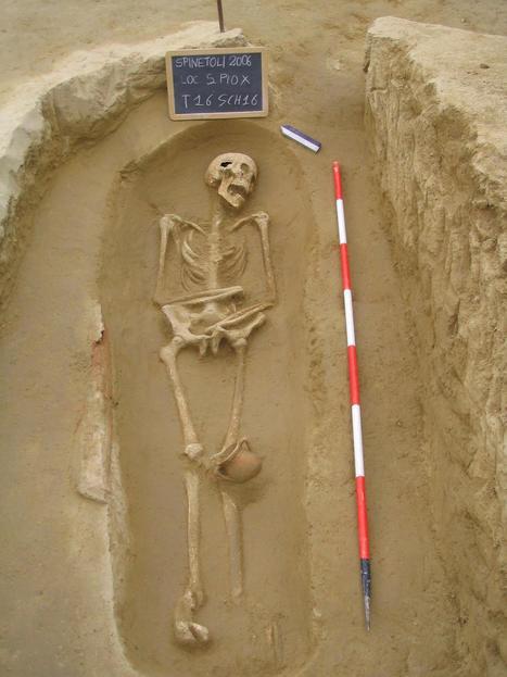 Archeologia nelle Marche: Ritrovamenti campagna di scavo 2006 a Spinetoli   Le Marche un'altra Italia   Scoop.it