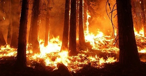 Wildfires Are Getting Worse: Time to Rehydrate Our Landscapes | STEM Connections | Scoop.it