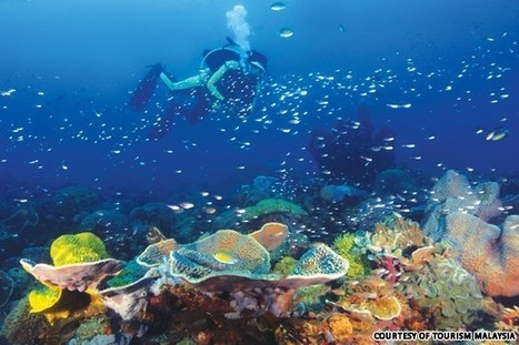 Malaysia's 10 best islands | Diving Destinations | Scoop.it