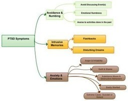 PTSD Signs and Symptoms Flow Chart - The Battle Buddy Foundation | Somatics and trauma | Scoop.it