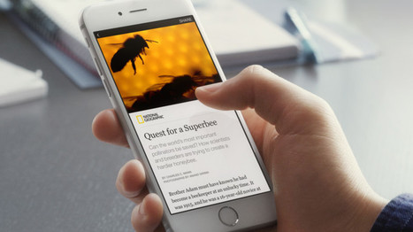"""Facebook Brings The New York Times, BuzzFeed And Others On Board With """"Instant Articles""""   CalypsoIT - Education   Scoop.it"""