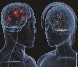 Les neurosciences au service des Managers Humanistes et de l ... | Découvrons le fonctionnement de notre cerveau | Scoop.it