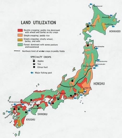 [Eng] Comment la récolte de riz de cette année est-elle radiocontrôlée pour le césium? | The Mainichi Daily News | Japon : séisme, tsunami & conséquences | Scoop.it