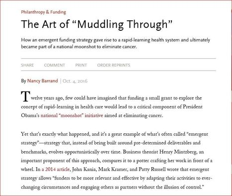 """The Art of """"Muddling Through"""" - Stanford Social Innovation Review. 