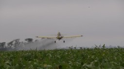 ¿Cuánto glifosato se aplica con aviones? | Mitre y el Campo | Herbicidas | Scoop.it