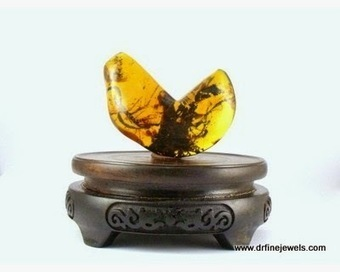 Demand of Amber Stones in Between Modern Times People   Amber fossils   Scoop.it