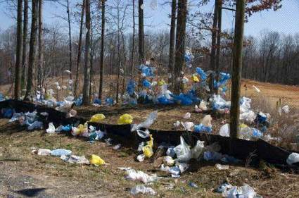 Hacia un futuro sin bolsas de plástico | Agua | Scoop.it