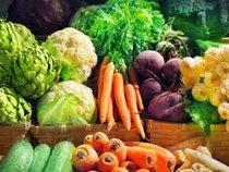 Le fer végétal meilleur que le fer animal | Nutrition | Scoop.it