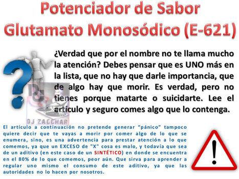 Comiendo Veneno ¿Y No Lo Sabes? El Potenciador de Sabor Glutamanato Monosódico  E-621 | La R-Evolución de ARMAK | Scoop.it