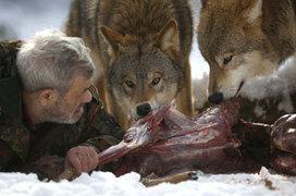 The Wolf Man | PaginaUno - Società | Scoop.it