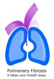 Pulmonary fibrosis involves scarring of the lungs | Idiopathic pulmonary fibrosis | Scoop.it