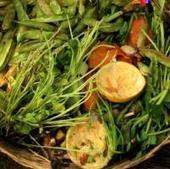 Quelles valorisations pour les biodéchets des entreprises ?   déchets   Scoop.it