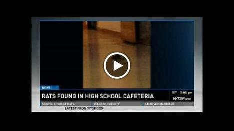 Rats found in Florida high school cafeteria (VIDEO) | The Billy Pulpit | Scoop.it