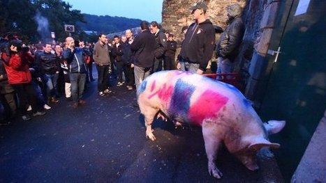 Crise de la filière porcine : une semaine cruciale pour l'avenir - France 3 Pays de la Loire | Agriculture en Pays de la Loire | Scoop.it