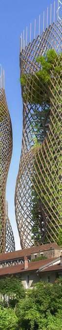Agriculture urbaine : l'avenir de l'agriculture verticale en 5 questions : Geo.fr | Un potager dans la ville | Scoop.it