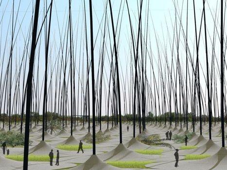 Des roseaux géants oscillent dans le vent pour produire de l'électricité | great buzzness | Scoop.it