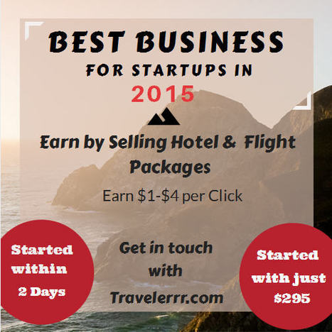 Best Business For Startups in 2015 | Start Your Own Travel Search Engine Site | Scoop.it