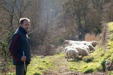 Soutenir l'écopastoralisme en Sarladais | Agriculture en Dordogne | Scoop.it