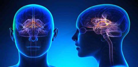 Alzheimer : quand la perte de mémoire n'est pas seulement due à l'inattention #Alzheimer | Santé & Actualités | Scoop.it