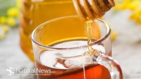 The Benefits of Locally Grown Honey - Natural News Blogs | Natural Remedy Ideas | Scoop.it